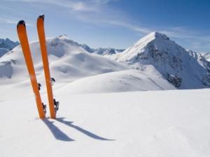 インターリンク、新ドメイン「ski(スキー)」の受付を開始