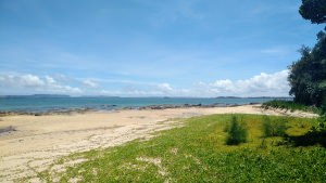 沖縄移住の一番の利点はやっぱりキレイな海【コラム】