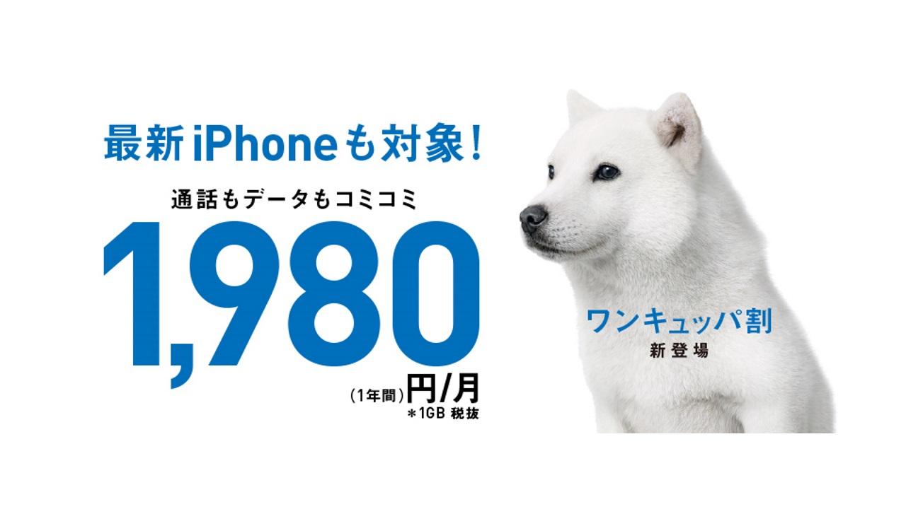 ソフトバンク、iPhoneの利用料を月額1,980円から利用できる「ワンキュッパ割」を提供