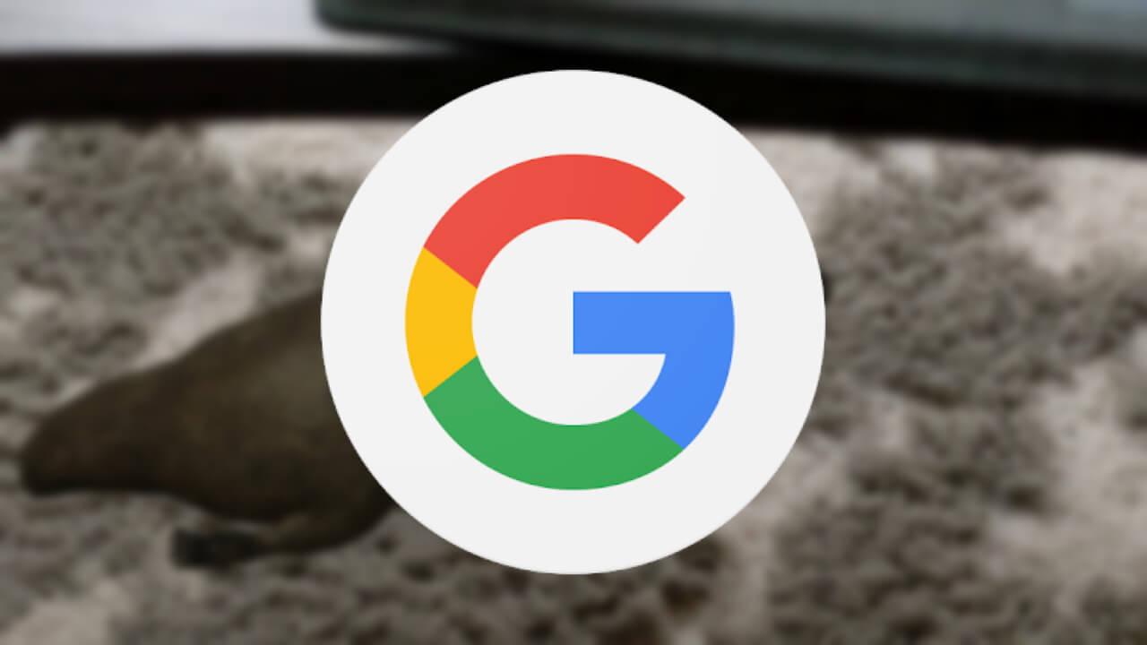 カモノハシ!「Google検索」にオーストラリア動物ARが登場